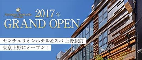 2017 Grand Open